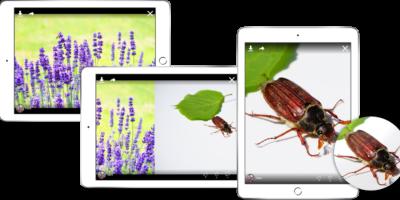 Manche Anbieter bieten auch eine App für das iPhone oder iPad (Bild: Pixabay)